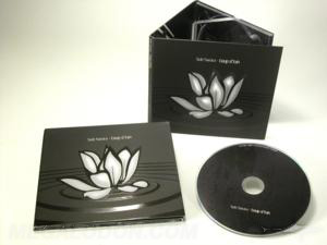 Custom cd packaging spot uv gloss matte lamination 6pp digipak
