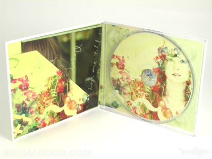 custom diagonal pocket cd digipak packaging