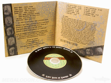 fiberboard cd LP jacket with vinyl cd