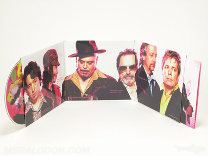 CD LP Cover with 6panels, tube pockets, eco cd packaging