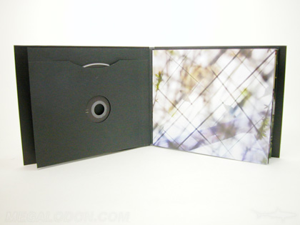 dvd book packaging with sleeve to hold disc landscape wide